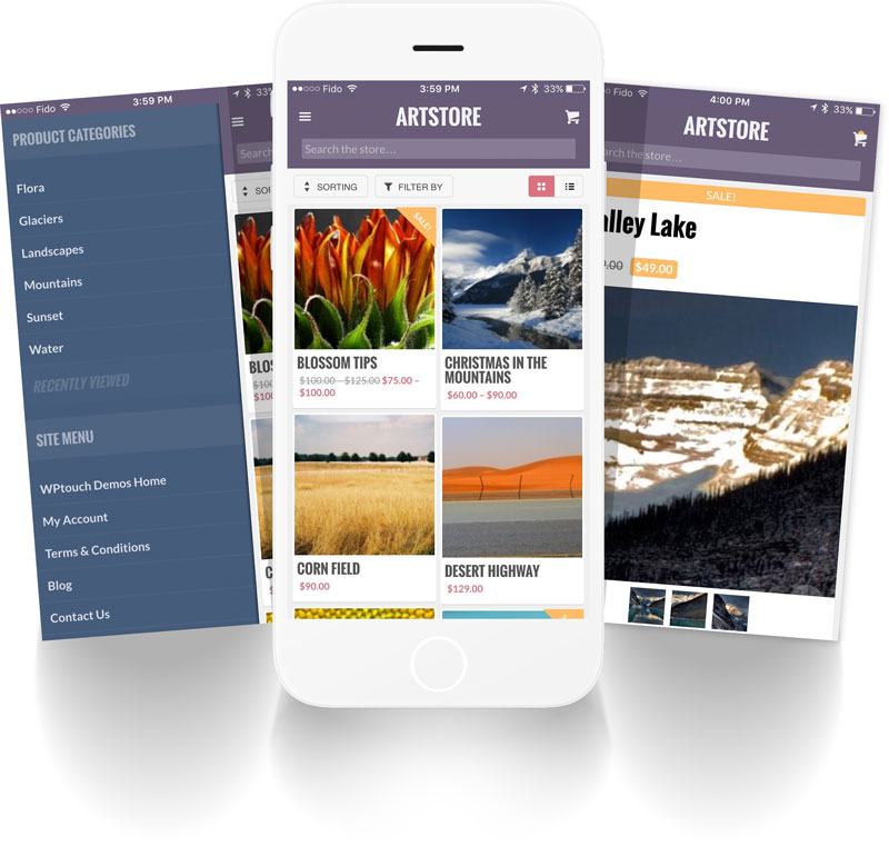 Explore our gorgeous mobile-friendly themes for WordPress